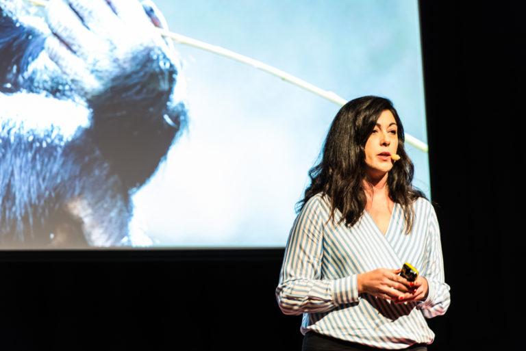 TEDX_0185